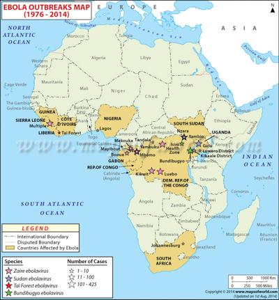 Bracia Braun (źródło: http://www.zimbio.com)