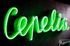 neon1 (1 of 1)-10